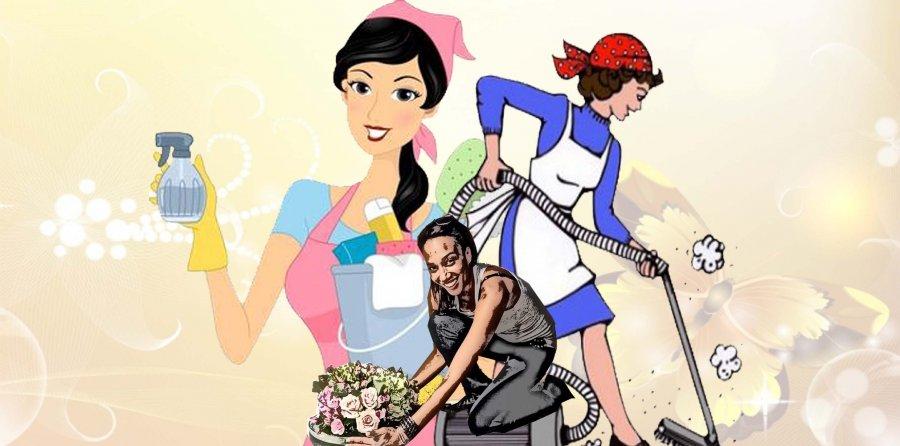 Recherche femme de ménage 37