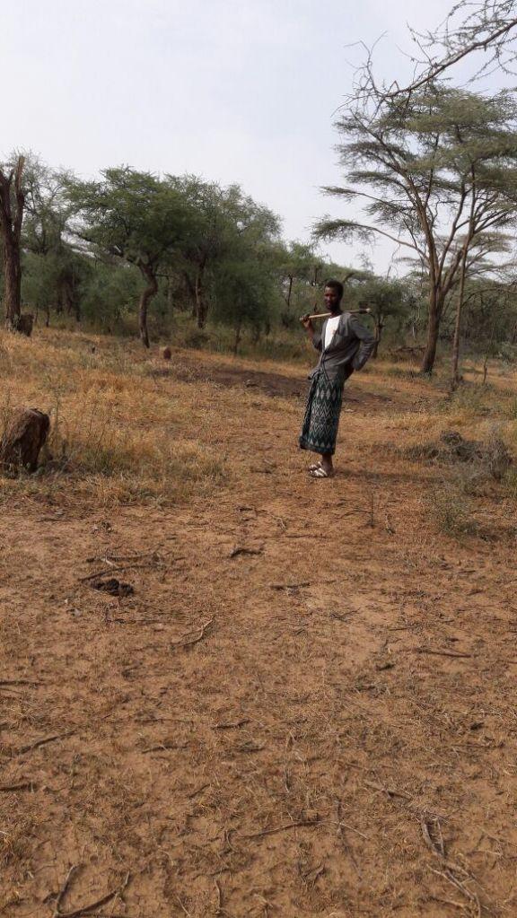 Terrain en Ethiopie, a Dire Dawa