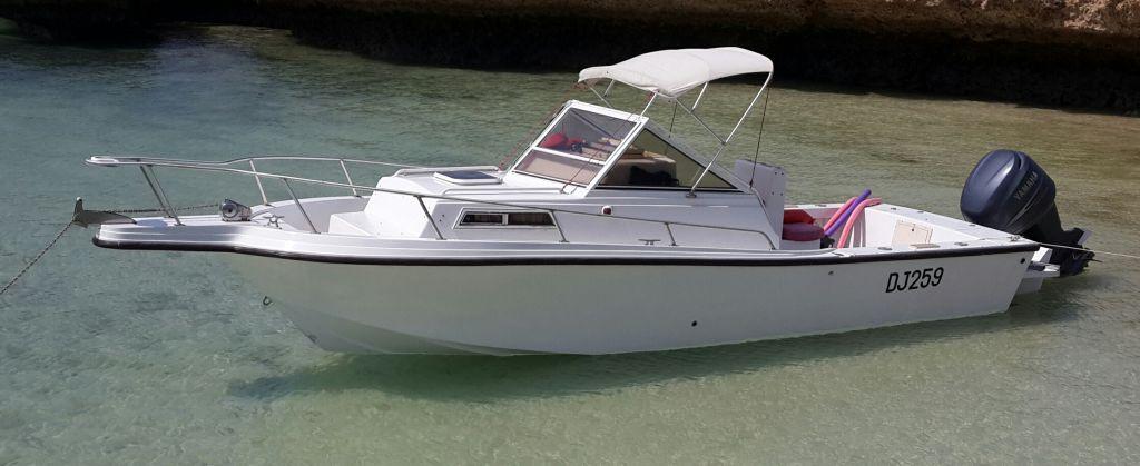 bateau mako 230 walkaround yamaha 225cv 4 temps  u00e0 djibouti