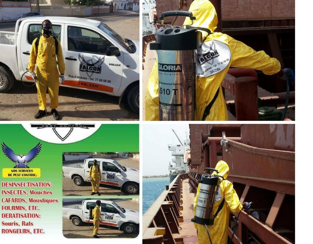 Falcon Pest Control est spécialisée dans la désinfection
